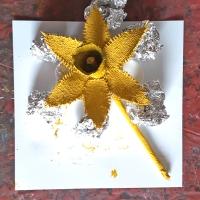 Drying daffodil